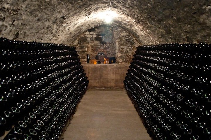 Champagne cellars