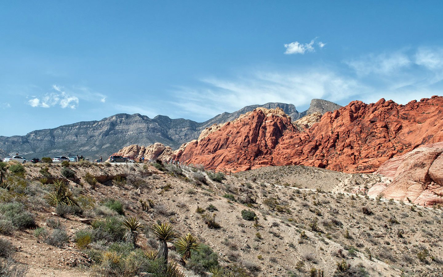 Red Rock Canyon state park in Nevada