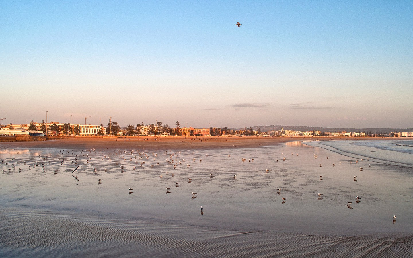 Walking on the beach, one of the best things to do in Essaouira