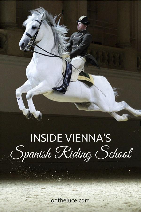 Inside Vienna's Spanish Riding School – On the Luce travel blog