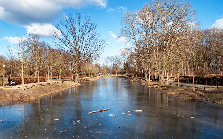 A frozen lake in Berlin's Tiergarten in winter