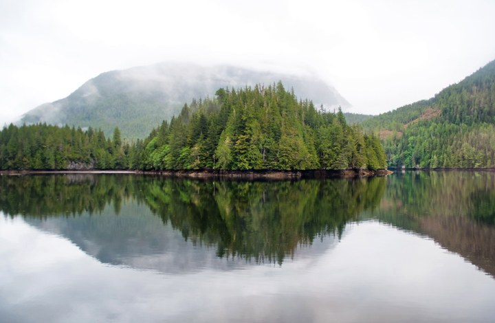 Great Bear Rainforest Canada