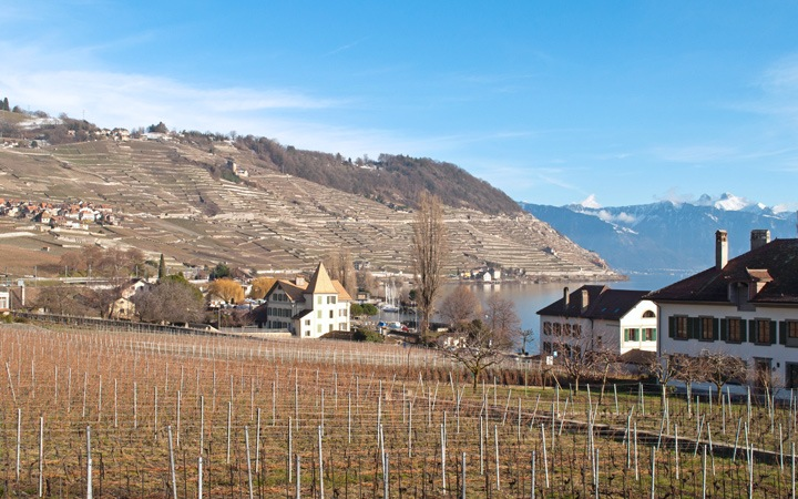 A taste of Swiss wine in the Lavaux vineyards