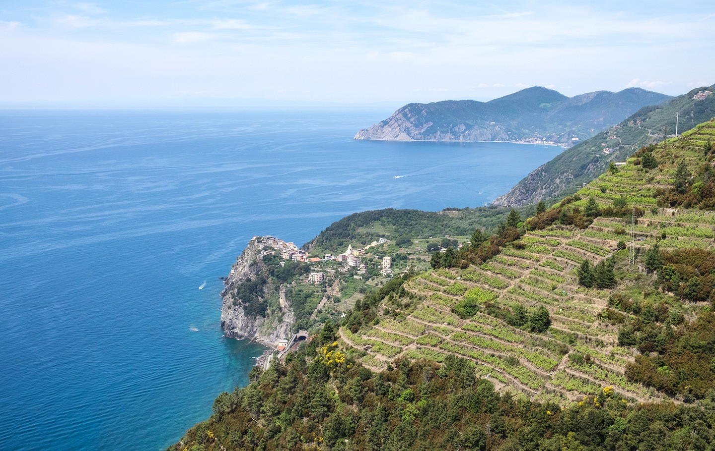 Looking down on Corniglia from the vineyard path in the Cinque Terre