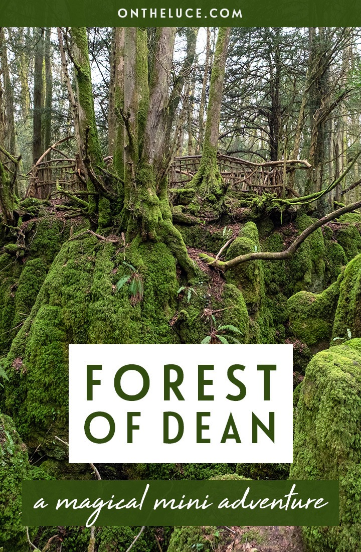 Exploring England's magical Forest of Dean with a luxury stay at the Tudor Farmhouse in Clearwell, a former farm turned boutique hotel with award-winning restaurant, surrounded by Forest of Dean attractions like Puzzlewood and Clearwell Caves. #ForestofDean #Gloucestershire #England #hotel