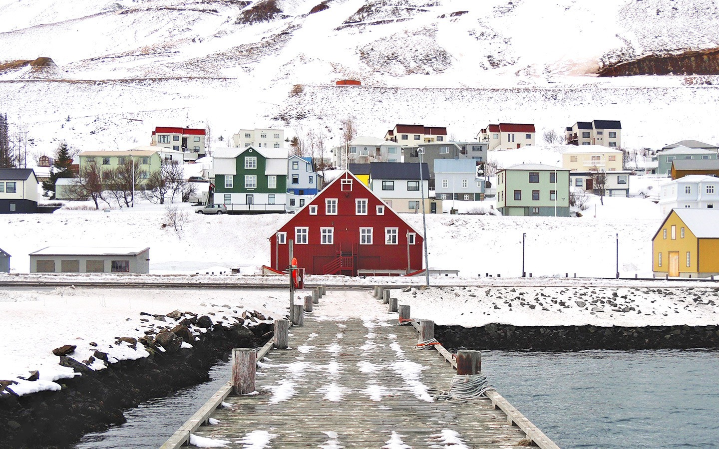 Colourful houses in winter in Iceland