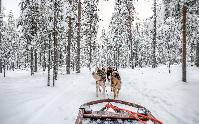 A winter wonderland trip to Rovaniemi, Finnish Lapland