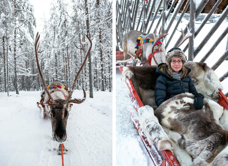 A reindeer sleigh ride at Santa Claus Village, Lapland