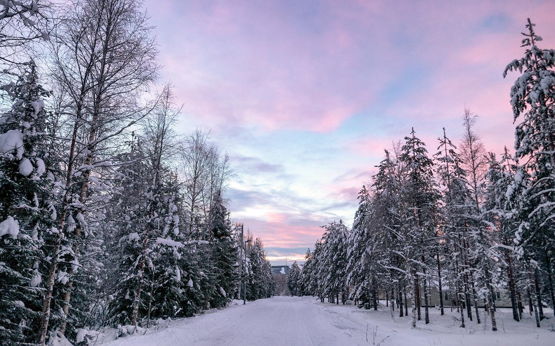 Pink skies at sunrise in Lapland