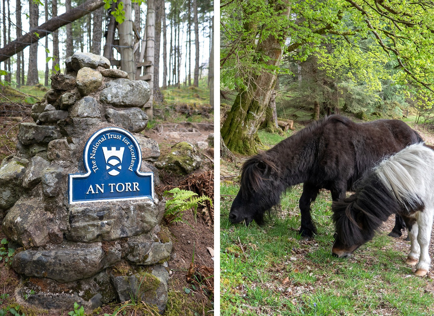 Hiking in Ann Torr in the Highlands – one of the top things to do in Glencoe