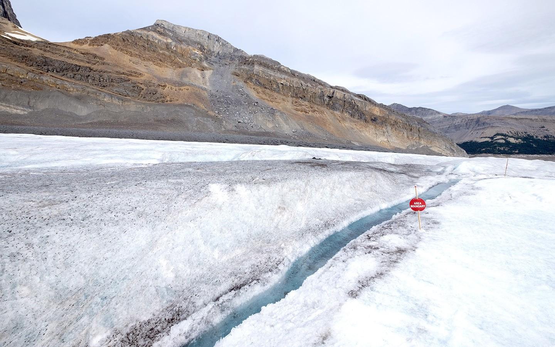 Bright blue streams on the Athabasca glacier