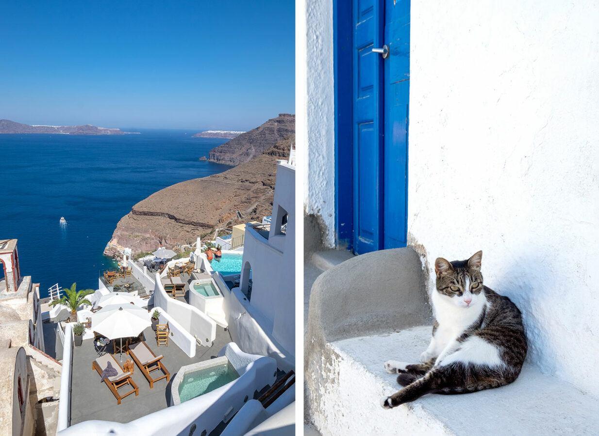 View across the caldera and Greek cat in Fira, Santorini